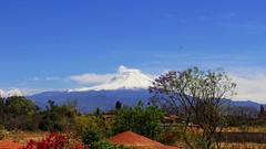 Don Goyo (Bernardo Escamilla) Tags: mxico mexico volcano don puebla morelos volcn popocatpetl goyo