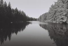 North Madawaska River (KevinCollins00) Tags: autumn blackandwhite bw ontario canada fall film nature water monochrome analog river outdoors mono 2000 super plus algonquin ilford fp4 yashica madawaska algonquinpark fx3 filmisnotdead filmsnotdead believeinfilm
