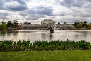 Kew Gardens, The Palm House