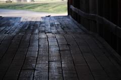 Covered Bridge Floor (Larry Haines) Tags: bridge river floor indiana covered eel roann