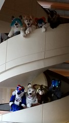 Dream Machine Photoshoot FWA 2015 - Shots by Lykanos (17) (Lykanos) Tags: furry photoshoot dreammachine fwa fwa2015 dmcostumes