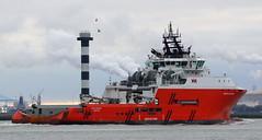PACIFIC DUCHESS (kees torn) Tags: tug nieuwewaterweg ahts swirepacificoffshore pacificduchess stmarinesingapore