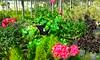 20150822_143449 (Megaolhar) Tags: flores toy flickr do dia vale paulo apa bom inverno são campos facebook tuka jordão paraíba fazendinha 2016 youtube ibama twitter jardinagem bioma gomeral
