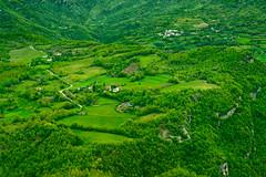 _DSC5237 (Giuseppe Cocchieri) Tags: trees mountain color tree verde green primavera colors alberi landscape spring nikon colore earth valle nikkor terra albero colori montagna paesaggio vallata