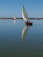 Vela latina (alcahazada) Tags: azul lago agua cielo vela barcas navegacin velalatina
