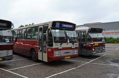 11.06.2016 (I); 50 jaar standaardbus (chriswesterduin) Tags: hbm htm