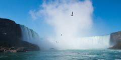 Niagara Falls 01 (tomomega) Tags: usa canada water niagarafalls niagara falls