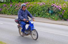 Mobylette bleue (claude 22) Tags: bretagne tour 2016 abva vehicule ancien old vintage mobylette bleue claude22 classic bike motorcycle moto