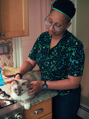 Loki home again, pt. 1 (robynmichelle79) Tags: animal cat loki robyn ragdoll
