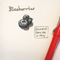 Blueberries  #EDiM #EDM #sketch #sketchbook #favoritefruit #catchup Day 24 (ellen_g_king) Tags: sketch sketchbook edm catchup edim favoritefruit