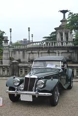 BCCM16040b (tanayan) Tags: park classic car nikon automobile meeting mg nagoya british j1  tf   tsuruma