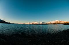 DSC_2274 (vincent-gabriel berger) Tags: new montagne eau lac beaut paysage froid montain brume zeland