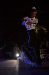 L'intensa passione per il Flamenco. (franco.56) Tags: colors dance nikon flamenco franco danzare nocheflamenca d7000