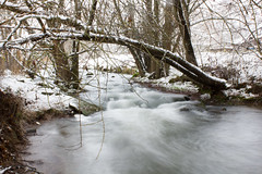 IMG_4328-2-pp-141227 (matthiaskunz) Tags: longexposure winter snow creek river fields tbingen ammertal