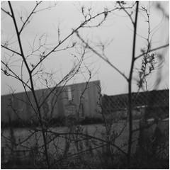 in echoes; by the airport (declic65.miura) Tags: 120 6x6 blackwhite expiredfilm skopar adoxchs100 voigtländersuperb