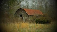 Graves County, KY Barn X30 (Bob G. Bell) Tags: barn rural lomo kentucky ky toycamera fujifilm fauxlomo plasticcamera x30