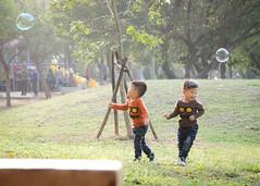 (brave22222) Tags: boy kid twins child bubbles taichung  nex taizhong    sel55210