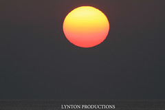 voggySunset 3/18/15 (Aaron Lynton) Tags: sunset canon hawaii maui 7d vog lyntonproductions