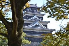 Hiroshima Castle (eaglelam89) Tags: travel japan asia hiroshima