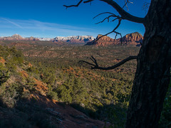 P1120012.jpg (Alan Gore) Tags: arizona nature hiking cathedralrock westerners
