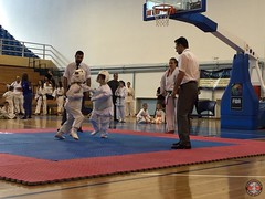 stefanou_15_5_2016_knockdown_177