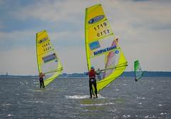 Windsurfers competing (2) (frankmh) Tags: skne sweden windsurfing windsurfer resund domsten