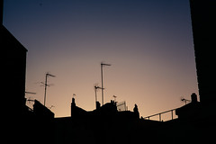 Waiting for the Signal at Dawn (hkokko) Tags: city london silhouette dawn signal antenna belgrave