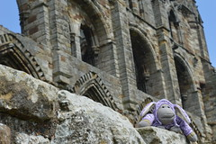 Monkey Up North - Whitby Abbey (monkey_pgtips) Tags: castle abbey monkey yorkshire lincolnshire whitby scarborough lyveden