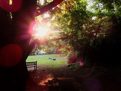 Now... What Do I Do With The Body? (nenneck) Tags: park uk sunset england colour london evening body warmth sunrays scne