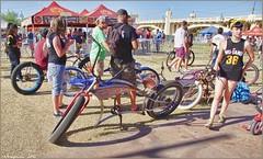 5230 (AJVaughn.com) Tags: park new arizona people beach beer colors bike bicycle sport alan brewing de james tour belgium bright cosplay outdoor fat parade bicycles vehicle athlete vaughn tempe 2014 custome ajvaughn
