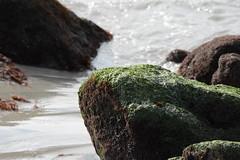 PUNTA DE TRALCA | LITORAL DE LOS POETAS (verte de frente / arquitecturista) Tags: chile ruta de landscape botes muelle mar los san playa punta antonio 78 litoral aire libre poetas tralca