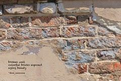 Broken wall (Don Iannone) Tags: haiku brickwall brokenwall poemandpicture