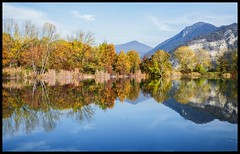 Immersion (ELtano86) Tags: torbiera torbiere sebino iseo brescia eltano86 italy reflexion riflessi riflesso reflexions reflejo natura nature naturale natural colors sky water green blue autumn autunno foliage