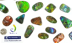 Natural Free Form Ammolite From Canada (The Ammolite) Tags: fossil minerals アンモライ stone freeform gemstone gem ammolite ammonite 斑彩石 mineral natural jewelry jewellery pendant