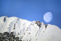 luna alpina (MILESI FEDERICO) Tags: world wild italy panorama moon mountain nature montagne nikon italia alba natura luna piemonte dettagli inverno alpi montagna piedmont paesaggio valsusa mattino dettaglio nital valdisusa milesi alpicozie valledisusa visitpiedmont nikond7100 milesifederico