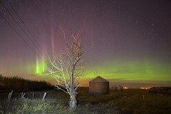 Tree of Fire, Solar Storm day 2 (John Andersen (JPAndersen images)) Tags: red green abandoned night fence stars purple farm satellite aurora orion curtains cassiopeia march18aurora