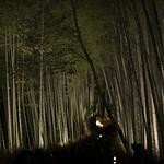 嵐山花灯路 竹林 / Illuminated Bamboo Forest in Arashiyama, Kyoto thumbnail