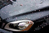 Spring on the Bonnet (riskosainas) Tags: reflection vehicle carhood carbonnet canon450d canoneos450d
