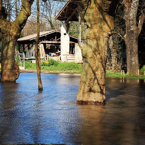 Lendemain de grande marée à Langoiran #maréedusiècle #gironde #garonne #nature #igersgironde #bordeaux