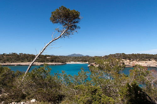 20150328141620-Mallorca.jpg
