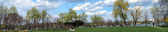 Concentration in the park (Radu Andrei B) Tags: panorama spring romania bucharest fujfilmxm1 herastrauparlk