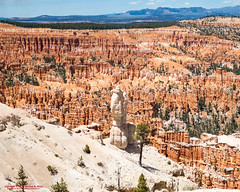 Bryce Point - Bryce Canyon National Park (mikerhicks) Tags: travel arizona usa southwest nature landscape geotagged outdoors photography utah spring unitedstates desert hiking adventure event backpacking bryce brycecanyon marblecanyon brycecanyonnationalpark brycepoint onemile geo:country=unitedstates geo:state=utah camera:make=canon exif:make=canon exif:focallength=32mm exif:aperture=18 geo:city=bryce exif:lens=1835mm exif:isospeed=100 canoneos7dmkii camera:model=canoneos7dmarkii exif:model=canoneos7dmarkii sigma1835f18dchsma geo:lat=3760420500 geo:lon=11215535667 geo:lon=11215535666667 geo:lat=37604205 geo:location=brycecanyon