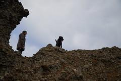 4mai_Thorbjorn_039 (Stefn H. Kristinsson) Tags: dog mountain dogs iceland spring hiking may ma vor hundur sland ganga fjallganga tamron2875mm grindavk hundar grindavik orbjrn nikond800 thornbjorn orbjarnarfell
