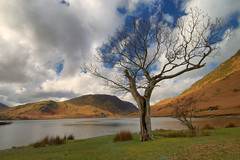 Crummock Water Tree (Andy Watson1) Tags: park uk trip travel blue light shadow vacation england sky cloud lake holiday mountains tree english water clouds canon landscape march countryside spring scenery view cloudy britain district united great lakedistrict scenic sigma kingdom national cumbria british crummock 70d