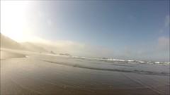 follow Blanca on Meyers Beach - three (Claudia Knkel) Tags: dog oregon walking blanca barefoot lowtide seastacks bordercolliemix meyersbeach gopro hero3silver