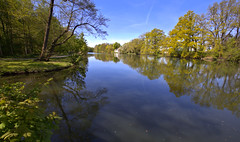 See im Sielpark - Bad Oeynhausen (Stefan_68) Tags: lake reflection tree nature germany lago deutschland see spring pond natur rbol nrw estanque spiegelung spiegelbild baum nordrheinwestfalen reflektion frhling frhjahr northrhinewestphalia