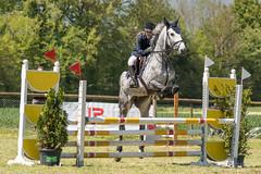 DSC00612_s (AndiP66) Tags: springen auffahrtspringen auffahrt wolfwil solothurn 2016 mai may 5mai2016 pferd horse schweiz switzerland kantonsolothurn cantonofsolothurn concours wettbewerb horsejumping springreiten pferdespringen equestrian sports pferdesport sport sony sonyalpha 77markii 77ii 77m2 a77ii alpha ilca77m2 slta77ii sony70400mm f456 sony70400mmf456gssmii sal70400g2 andreaspeters ch
