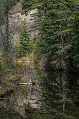 Pond Reflections (murph le) Tags: nature water forest reflections kananaskis pond alberta