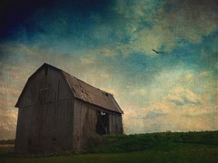 Fond memories of this old barn; surprised that it still stands. (Ferb's Pics) Tags: old barn farm magicunicornverybest