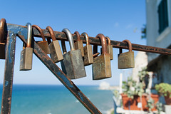 Peschici Lovelock (toffer1985) Tags: italien sea summer italy meer puglia gargano peschici